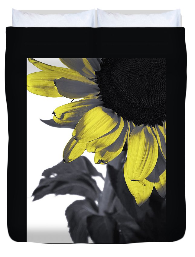 Sunflower Duvet Cover featuring the photograph Sunflower by Kelly Jade King