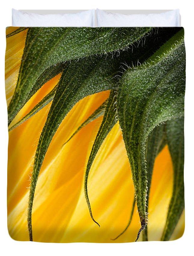 Sunflower Duvet Cover featuring the photograph Sunflower Macro by Ann Garrett