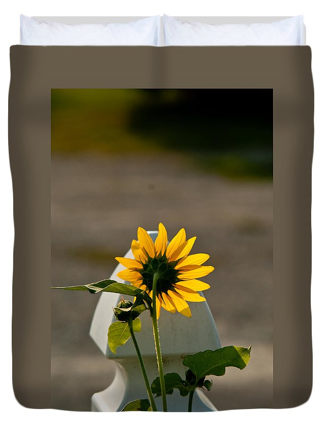 Sun Duvet Cover featuring the photograph Sunflower Morning by Douglas Barnett