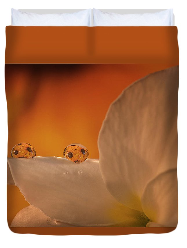 Duvet Cover featuring the photograph Sunflower On White Flower by Gabriel Jardim