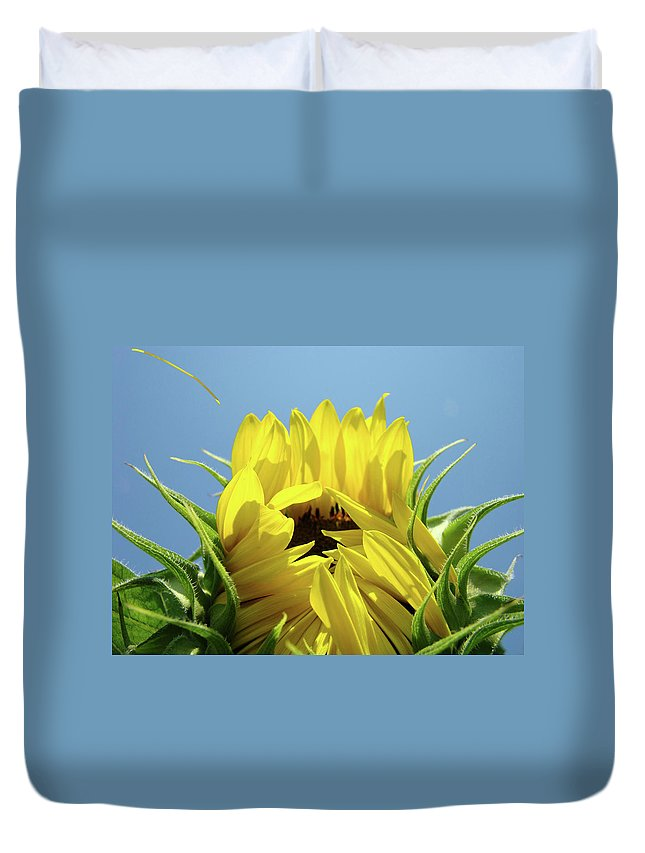 Sunflower Duvet Cover featuring the photograph Sunflower Opening Sunny Summer Day 1 Giclee Art Prints Baslee Troutman by Baslee Troutman