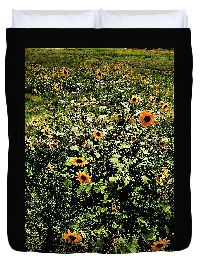 Flowers Duvet Cover featuring the photograph Sunflower Stalks by Scott Sawyer