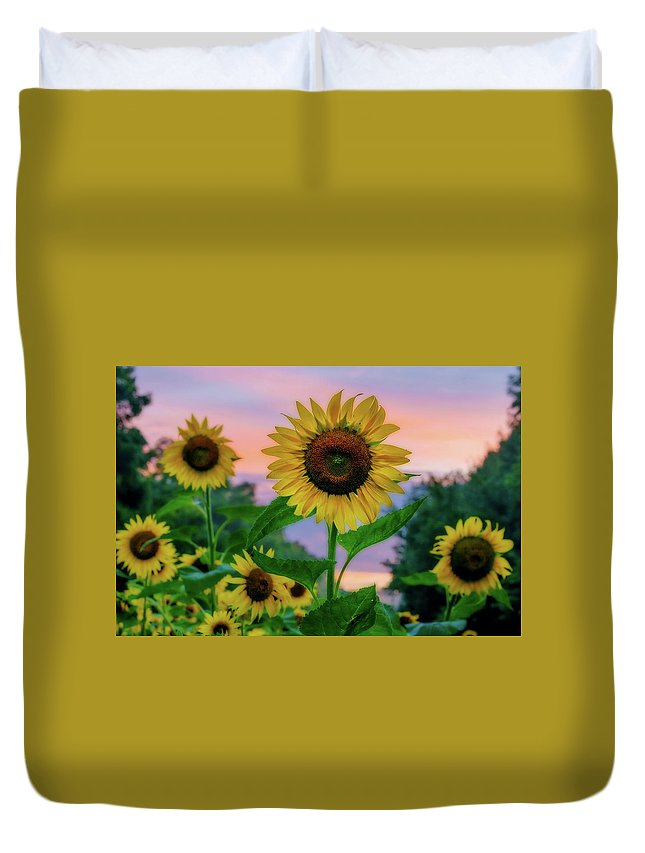 Maryland Duvet Cover featuring the photograph Sunflowers At Sunset by Dave Lyons