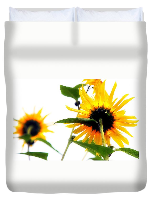 Sunflowers Duvet Cover featuring the photograph Sunflowers by Mal Bray