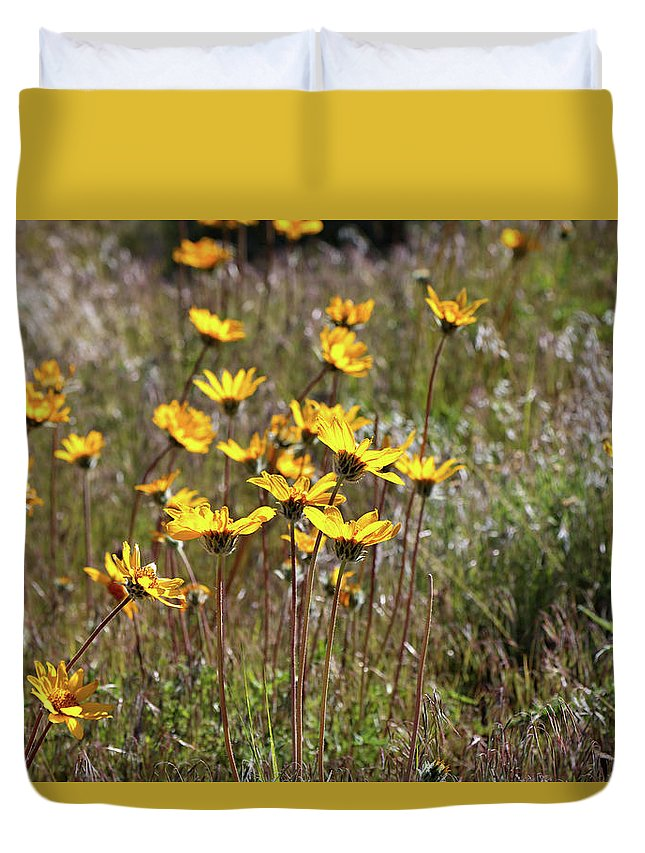 Sunflowers Duvet Cover featuring the photograph Sunflowers by Rosalyn Zacha
