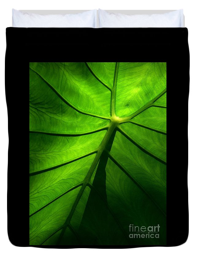 Green Duvet Cover featuring the photograph Sunglow Green Leaf by Patricia L Davidson