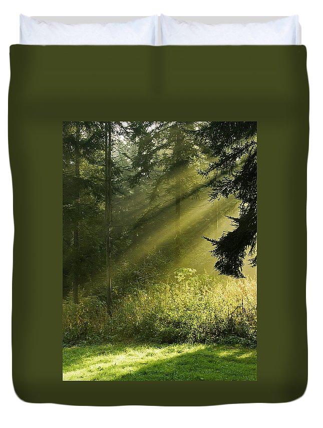 Nature Duvet Cover featuring the photograph Sunlight by Daniel Csoka