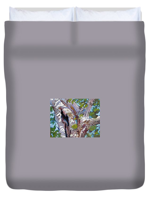 Tree Duvet Cover featuring the painting Sunlight On Sycamore by John Lautermilch