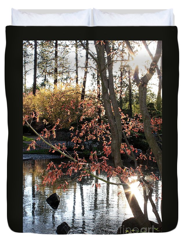 Maple Tree Duvet Cover featuring the photograph Sunlight Through Japanese Maple by Carol Groenen