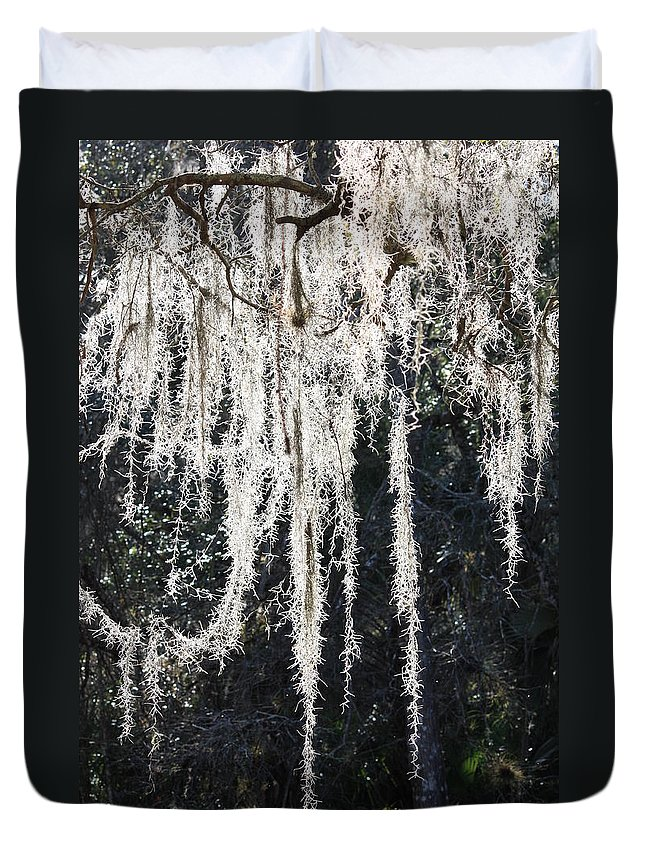 Mossy Duvet Cover featuring the photograph Sunlight Through Spanish Moss by Carol Groenen