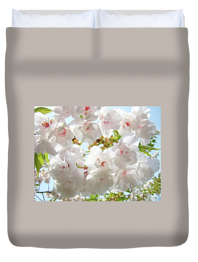 Colorful Duvet Cover featuring the photograph Sunlit Flowers Art Prints White Tree Blossoms Baslee Troutman by Baslee Troutman