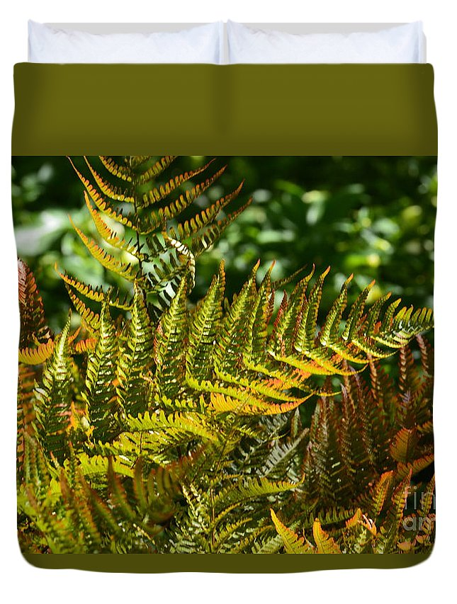 Sunlit Glow Duvet Cover featuring the photograph Sunlit Glow by Maria Urso