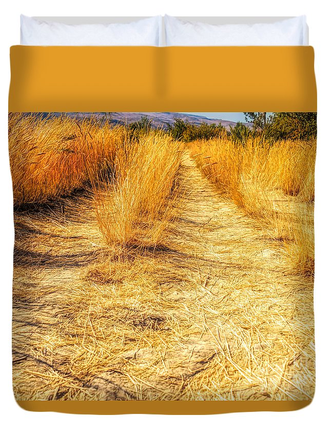 Fall Duvet Cover featuring the photograph Sunlit Grasses by Wendy Elliott