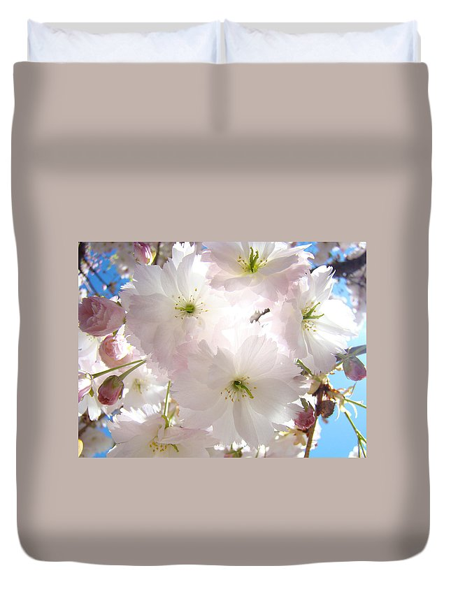 Blossom Duvet Cover featuring the photograph Sunlit Pink Blossoms Art Print Spring Tree Blossom Baslee by Baslee Troutman