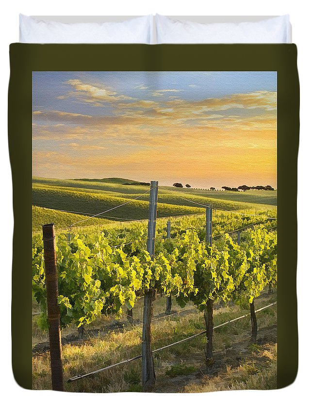 Vineyard Duvet Cover featuring the photograph Sunlit Vineyard by Sharon Foster