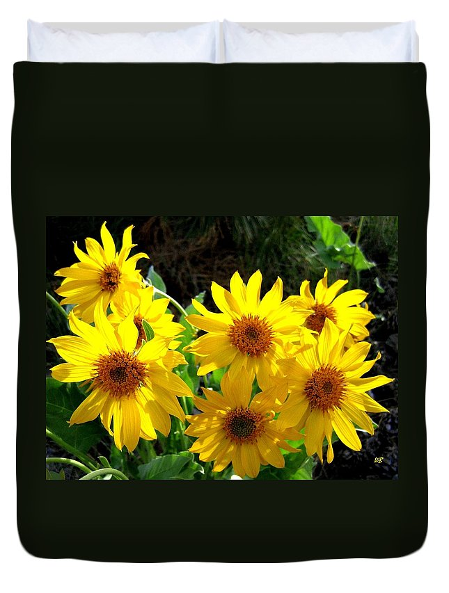 Wildflowers Duvet Cover featuring the photograph Sunlit Wild Sunflowers by Will Borden