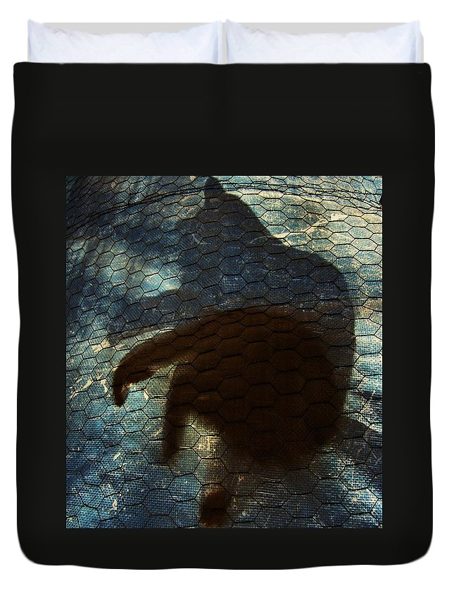 Cat Duvet Cover featuring the photograph Sunning Shadow by David Sutter