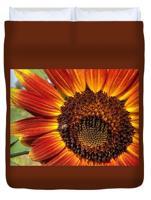 Sunflower Duvet Cover featuring the photograph Sunny And Bright Today. by Maria Malayter