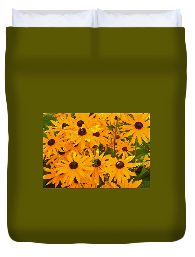 Blackeye Susan Duvet Cover featuring the photograph Sunny Days by Beth Collins