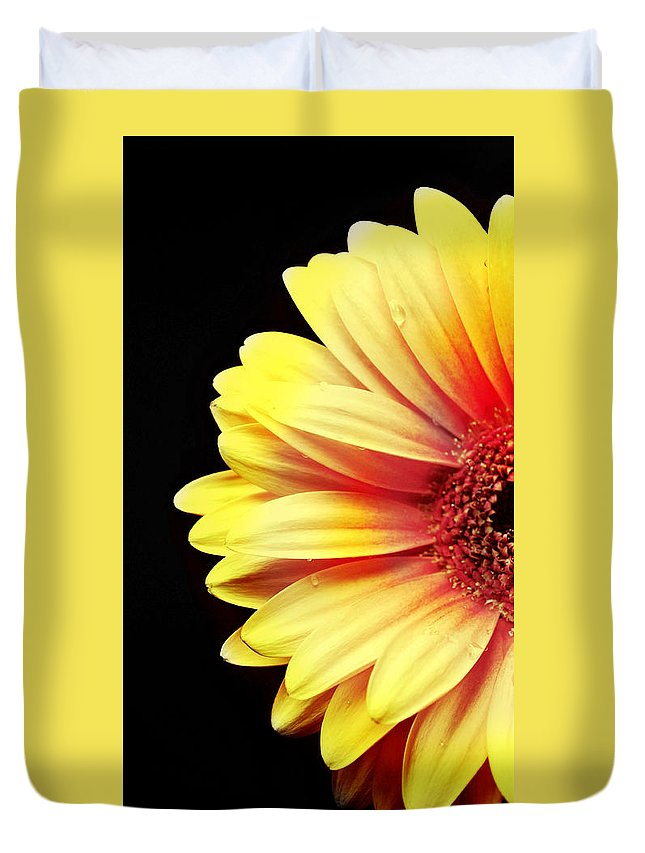 Sunny Side Over Easy Duvet Cover featuring the photograph Sunny Side Over Easy by Diana Angstadt