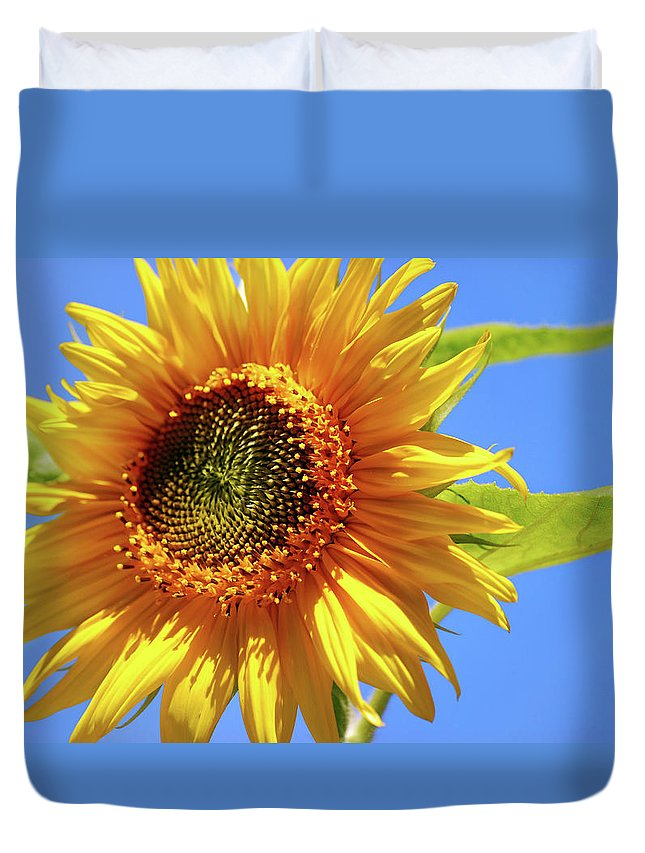 Sunflower Duvet Cover featuring the photograph Sunny Sunflower by Christina Rollo