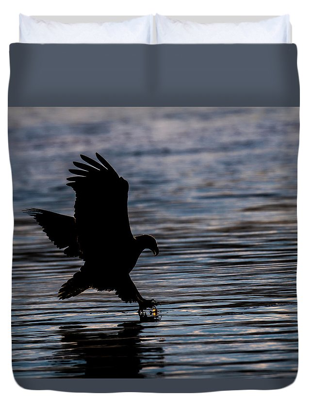 Bald Eagle Silhouette Catching Fish Sunrise Duvet Cover featuring the photograph Sunrise Catch by David Heemsbergen