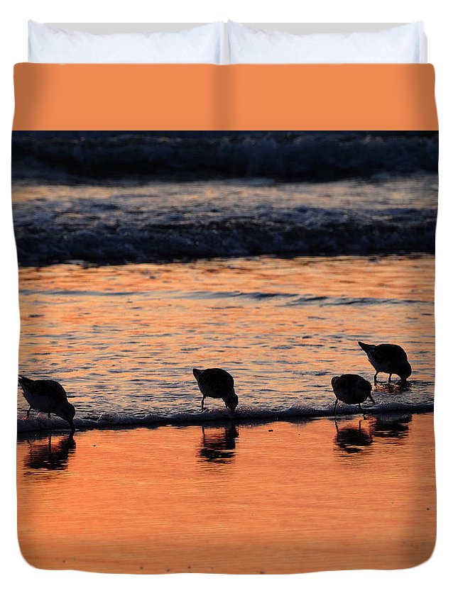 Sunrise Duvet Cover featuring the photograph Sunrise Harmony by Dianne Cowen