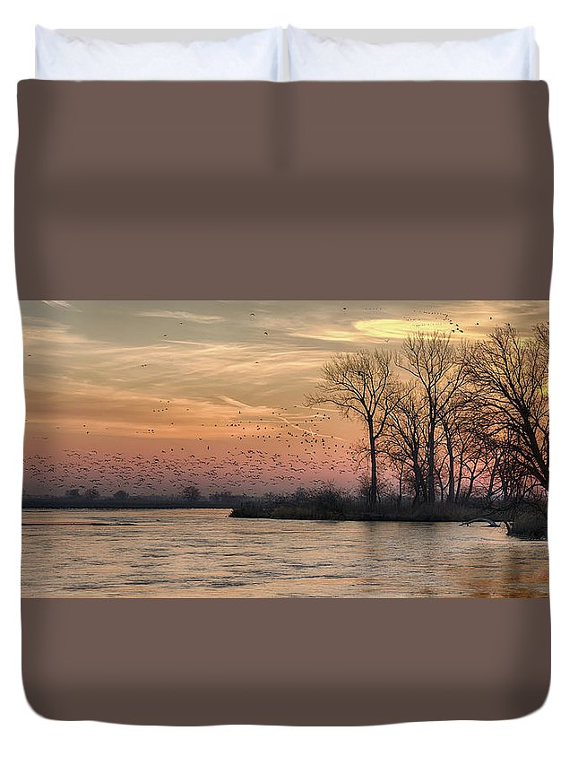 Sandhill Cranes Duvet Cover featuring the photograph Sunrise On The Platte by Susan Rissi Tregoning