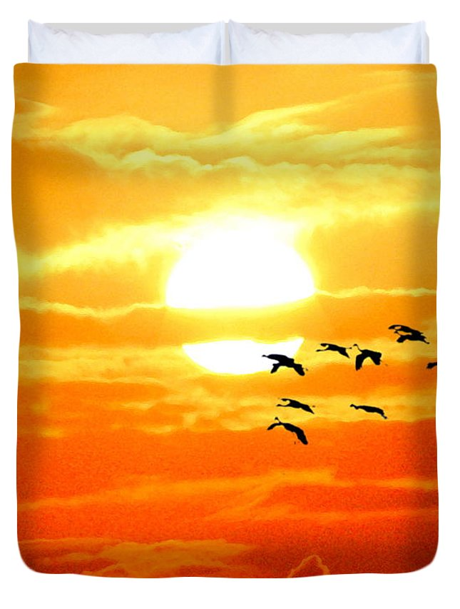 Wgilroy Duvet Cover featuring the photograph Sunrise / Sunset / Sandhill Cranes by W Gilroy