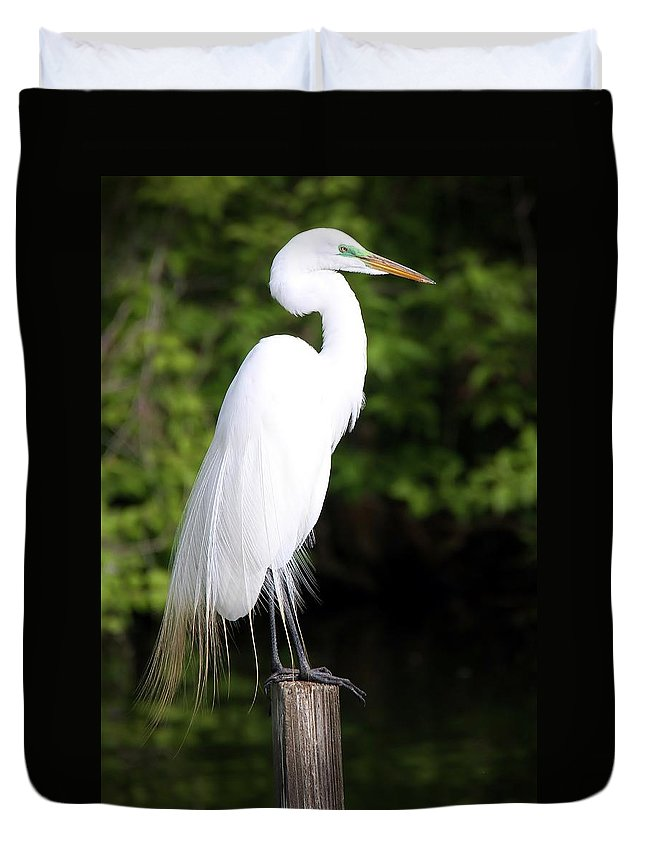 Egret Duvet Cover featuring the photograph Sunrise With The Egret by Christopher Miles Carter