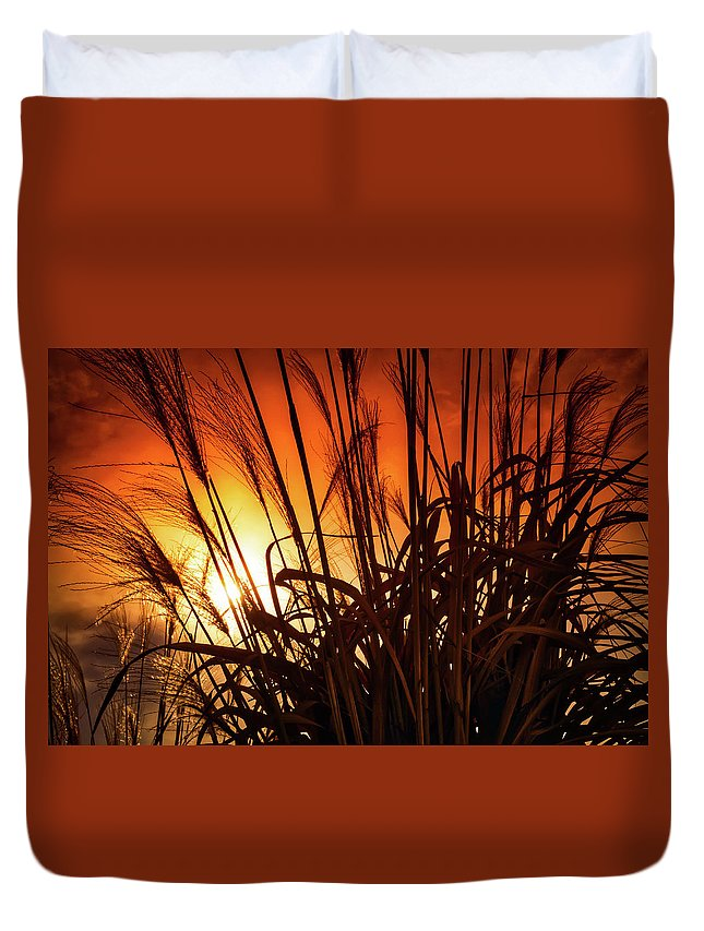 Landscape Duvet Cover featuring the photograph Sunset Grass by Jim Love