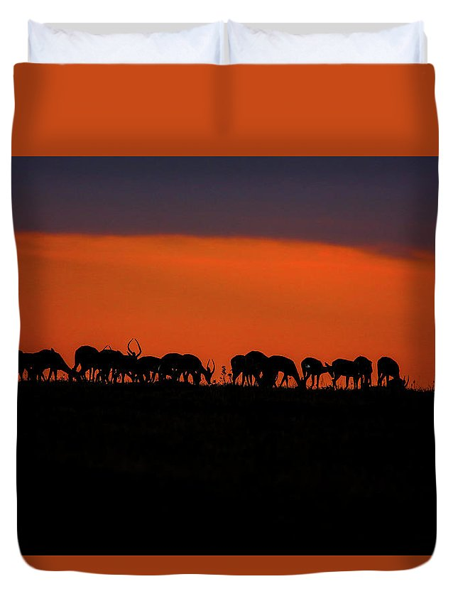 Landscape Duvet Cover featuring the photograph Sunset On The Serengeti by Leigh Lofgren