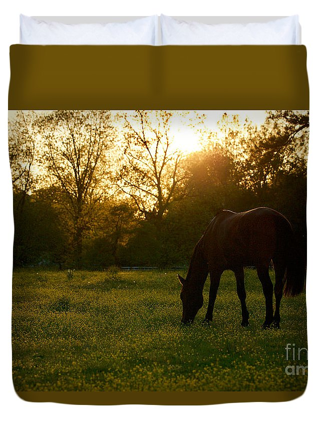 Colonial Williamsburg Duvet Cover featuring the photograph Sunset Over A Spring Meadow by Rachel Morrison