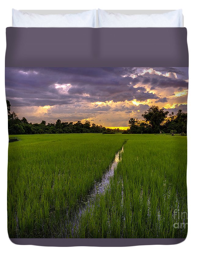 Sunrise Duvet Cover featuring the photograph Sunset Rice Fields In Cambodia by Mike Reid
