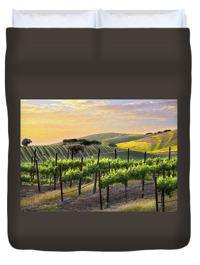Vineyard Duvet Cover featuring the photograph Sunset Vineyard by Sharon Foster