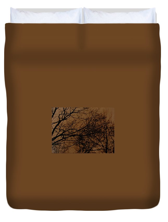 Landscape Duvet Cover featuring the photograph Sunset Winter by Rob Hans