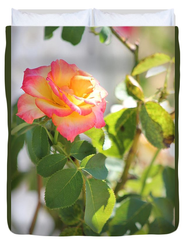 Flowers Duvet Cover featuring the photograph Sunshine Rose by Michelle Powell