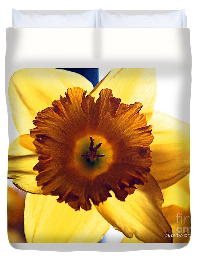 Yellow Sun Sunshine Daffodil Flower Bloom Edit Modern Edge Photograph Nature Duvet Cover featuring the photograph Sunshine. by Stevie Ellis