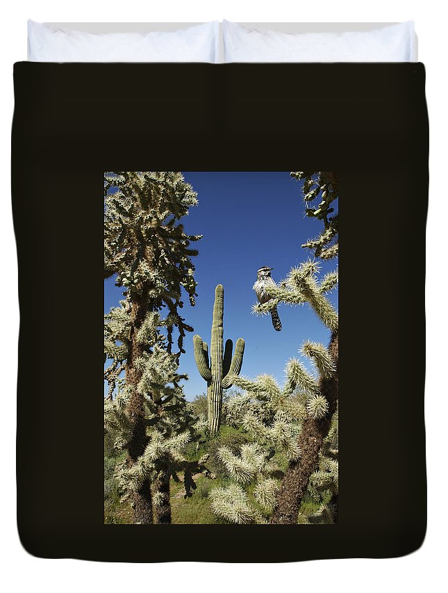 Saguaro Duvet Cover featuring the photograph Surrounded Saguaro Cactus Wren by Jill Reger