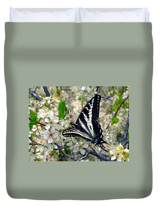 Butterfly Duvet Cover featuring the photograph Swallowtail and Plum Blossoms by Karon Melillo DeVega