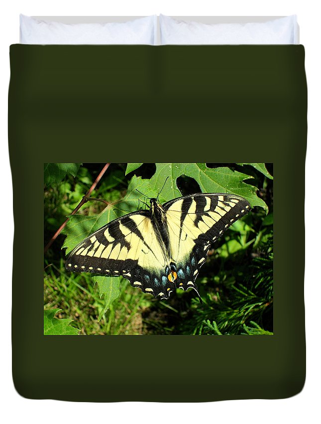 Swallowtail Duvet Cover featuring the photograph Swallowtail by Peggy King