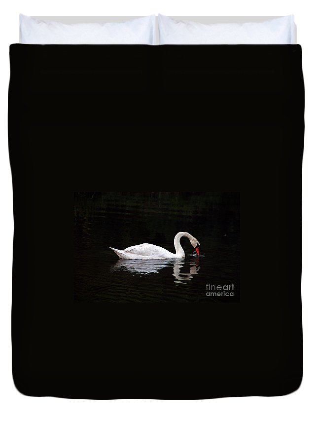 Clay Duvet Cover featuring the photograph Swan Drinking by Clayton Bruster