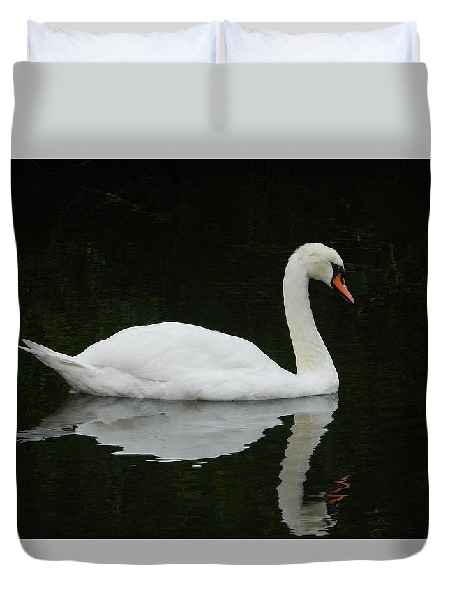 Swan Duvet Cover featuring the photograph Swan by Kyle Hillman