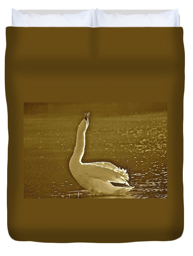 Swan Duvet Cover featuring the photograph Swan Lake by Diana Hatcher