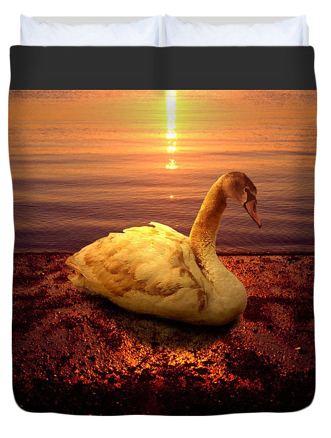 Animal Duvet Cover featuring the photograph Swan Lake by Yuri Lev