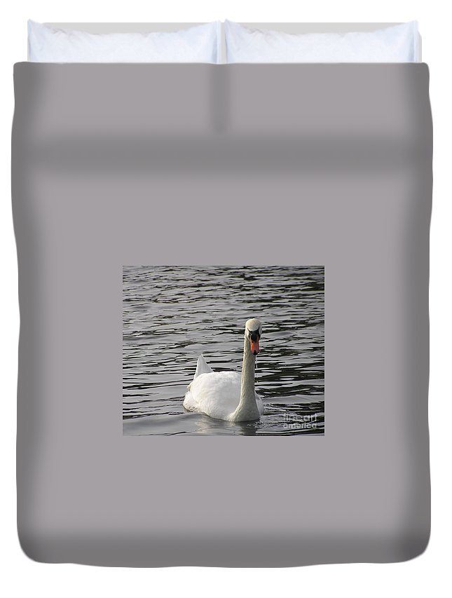 Swan Duvet Cover featuring the photograph Swan by Louise Magno