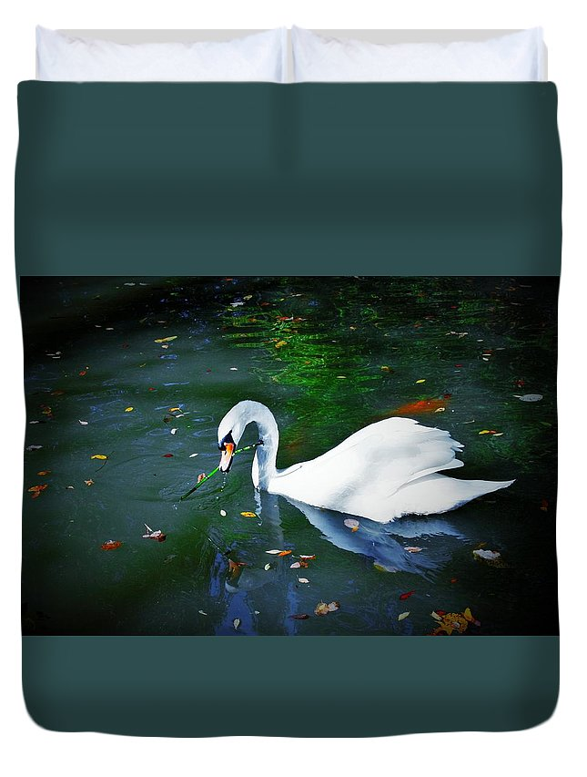 Swan Duvet Cover featuring the photograph Swan With Twig by Nancy Henley