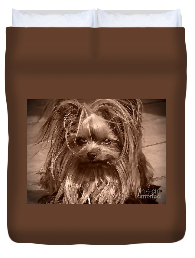 Yorkie Duvet Cover featuring the photograph Sweet Baby by Gail Bridger