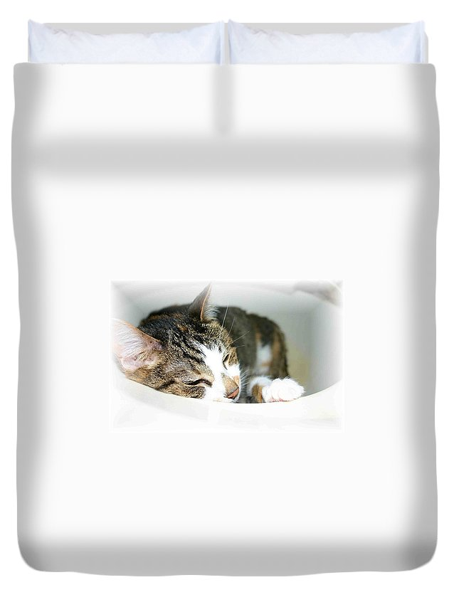 Cat Duvet Cover featuring the photograph Sweet Dreams by Nelson Strong