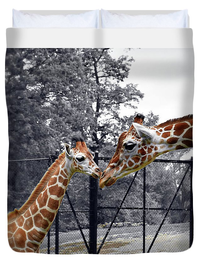 Sweet Moment Duvet Cover featuring the photograph Sweet Moment by Patti Whitten